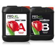 BLOOM A&B 10 LT PRO-XL